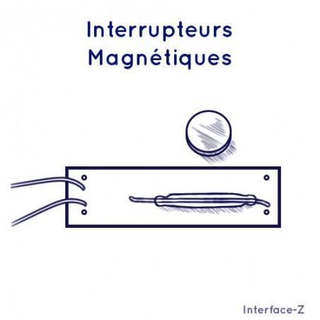 Interrupteur magnétique ILS - Interrupteurs Spéciaux