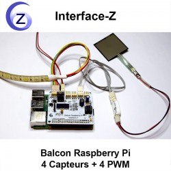 Carte Balcon Raspberry Pi avec un capteur de force FSR et un ruban de LED quadrichromique