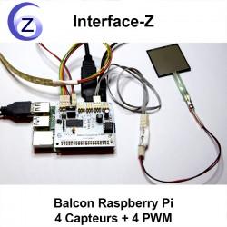 Carte Balcon Raspberry Pi - Branchements écran HDMI, alimentation USB C, capteur FSR, actionneur ruban de LED 4 couleurs