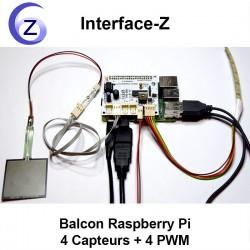 Carte Balcon Raspberry Pi - Connexions HDMI, alimentations, capteur, actionneur