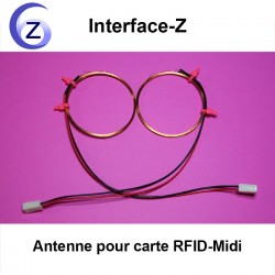 Deux antennes RFID