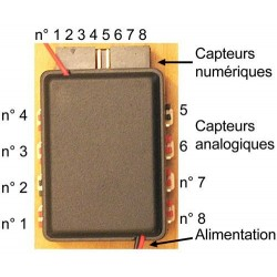 Mini-HF 433 / 869 MHz pour capteurs
