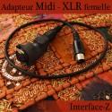 Adapteur Midi - XLR femelle Interface-Z