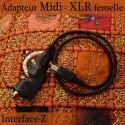 Adaptateur Midi - XLR