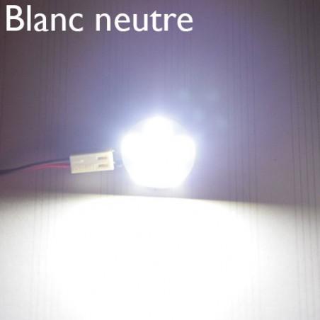 Ampoule LED blanc neutre, sur feuille de papier