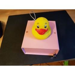 Duck Song